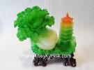Bắp cải xanh H186G