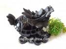 Rùa đầu rồng hắc ngà GM071