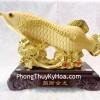 Cá Kim long vàng kim phát tài K096M