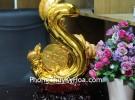 Lục ngư 6 cá vàng nhảy múa phun châu C092A