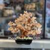 Cây thạch anh vàng trung dáng truyền thống đế đen KC107