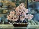 Cây thạch anh hồng lớn hạt nhỏ dáng thịnh vượng trên chậu có núi đá KC109