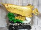 Thần cá kim long vàng bóng trên bẹ cải như ý xanh sóng tiền vàng khủng LN165