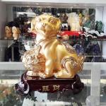H405G cho vang 1 150x150 Chó vàng chậu tiền lớn   vượng tài H405G