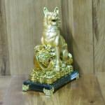 c029a cho nhu y lon 1 150x150 Chó Săn Vàng Bên Như Ý C029A