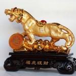 c119a ho vang khung 2 150x150 Hổ vàng khủng trên núi tiền vàng C119A